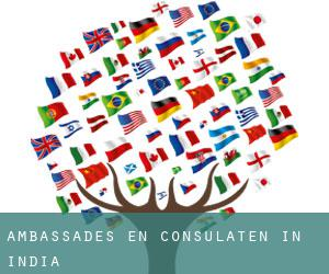Ambassades en consulaten in India